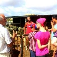 eco tours - farm visit
