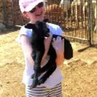 eco tours - animal-petting