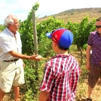 eco tours vinyard