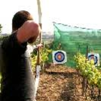 archery through vinyards